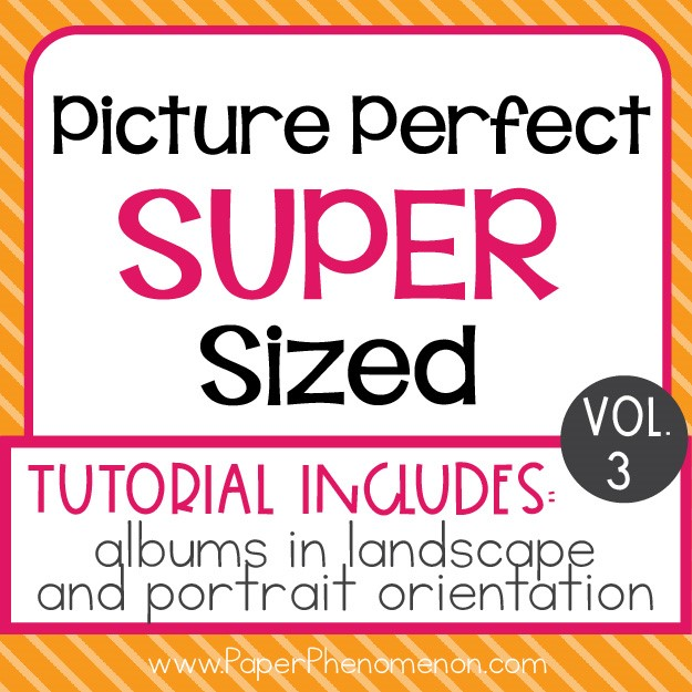 Picture Perfect Super Sized Photo Album Vol 3